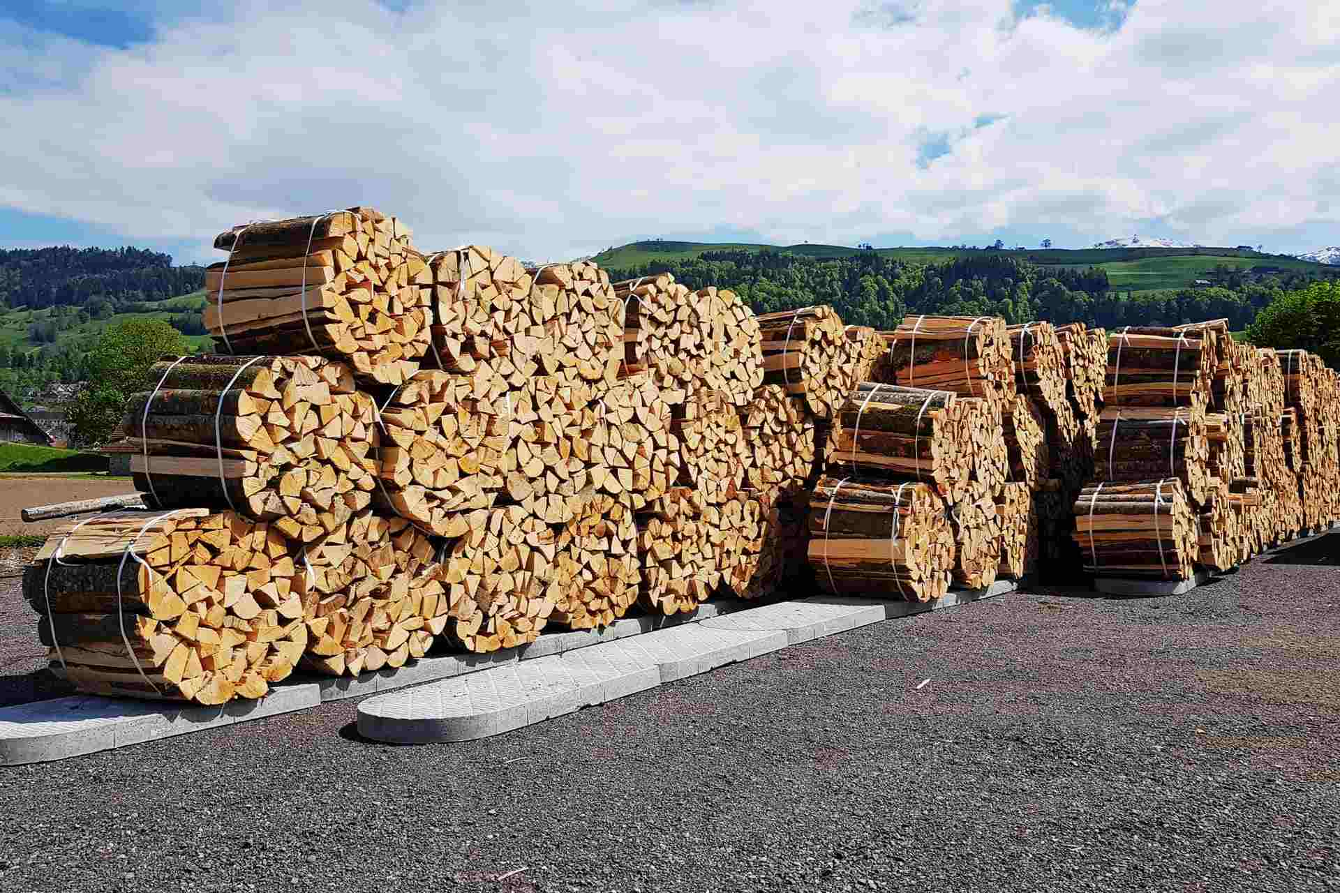 Cheminée Holz